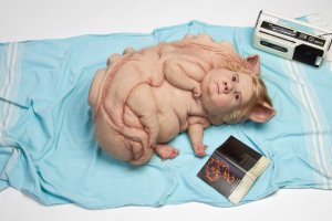 Patricia Piccinini Australia VIC b.1965 Teenage Metamorphosis 2017 Silicone, fibreglass, human hair, found objects / 25 x 137 x 75cm Purchased 2018 Queensland Art Gallery | Gallery of Modern Art Foundation. Collection: Queensland Art Gallery
